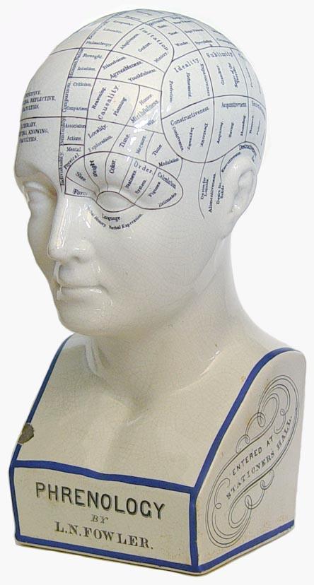 Fowler phrenology bust