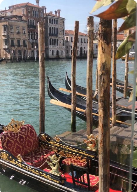 My Venice voyage | Toma Clark Haines The Antiques Diva