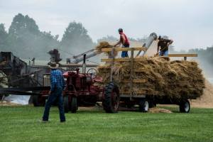 MD - 12th Annual Wheat Threshing @ 12th Annual Threshing Days
