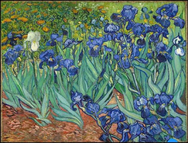 Les iris par ce peintre de génie