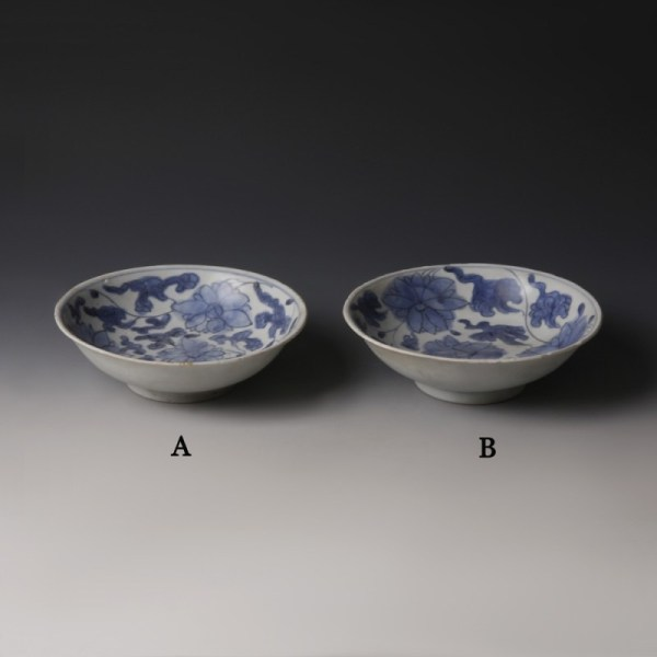 Chinese Kangxi Blue and White Dishes