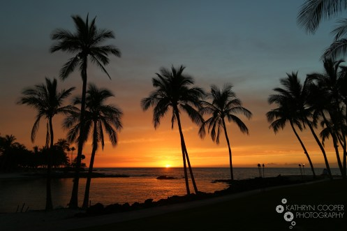 SunsetLogo-9078