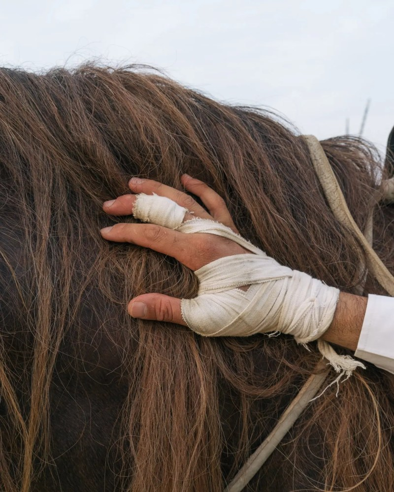 The relationship between the horses and their riders is usually really close.