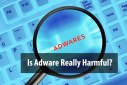 Is Adware Really Harmful for your Computer?