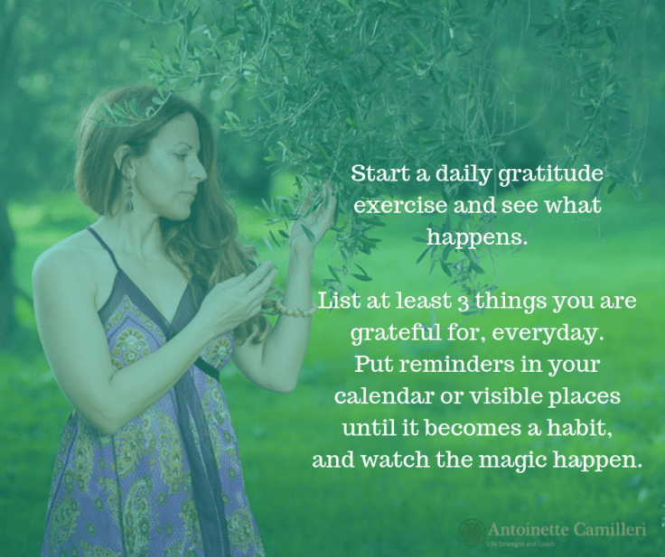 Daily gratitude exercise - Change your focus