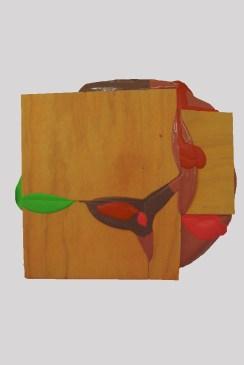 Lobe 2015, Acrylic and wood, 485 x 540 mm