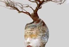 Photo of لينا شكور _ أبيض وأسود