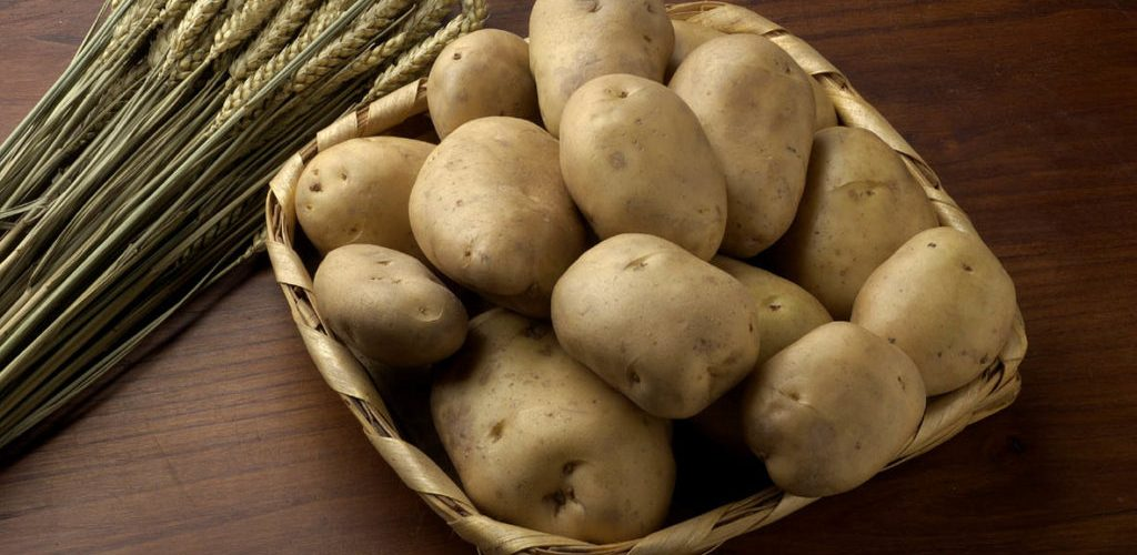 Patacas de carballo