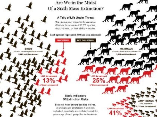 Risultati immagini per grafico specie in estinzione