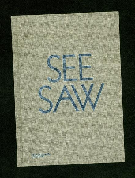 seesaw001