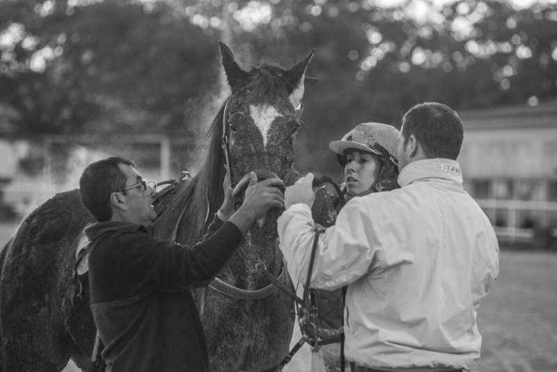 A day at the sulky races
