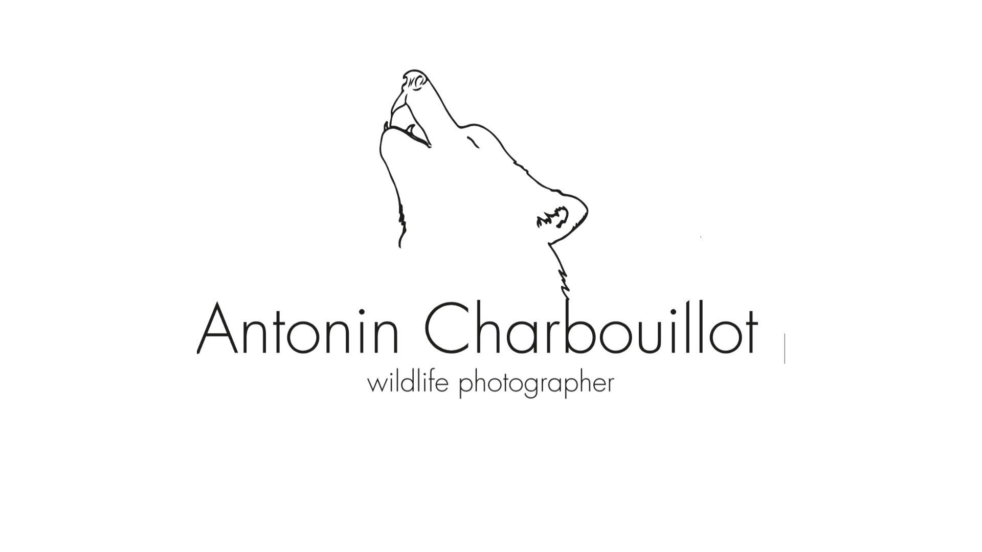 Antonin Charbouillot