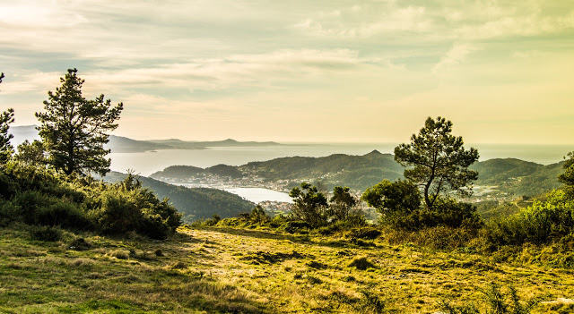 Trail Bites. La Trailsemana en Galicia y Asturias. Antonio Madriñán. Trail Galaica – Sansenxo. I Trail Blanco de Valgrande – Pajares. Costa Trail Gijón. IV carrera vikinga de Carnota.