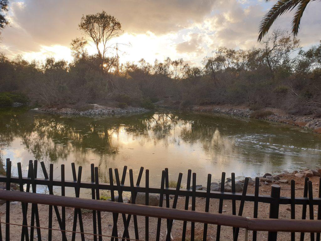 El Parque Tony Gallardo, arte y naturaleza