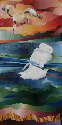 Albatros y cisne