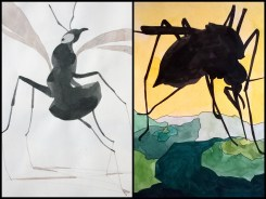 collage insectos 1 negro