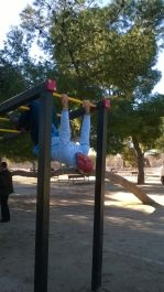 Monkeying around at the outdoor gym