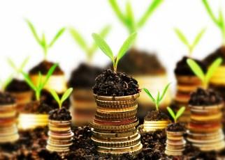 Cum cheltuiesc de obicei antreprenorii veniturile companiei?