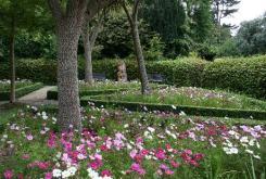 Carnfunnock Walled Garden 3