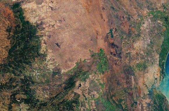 La data agricole, un nouveau marché convoité en Afrique