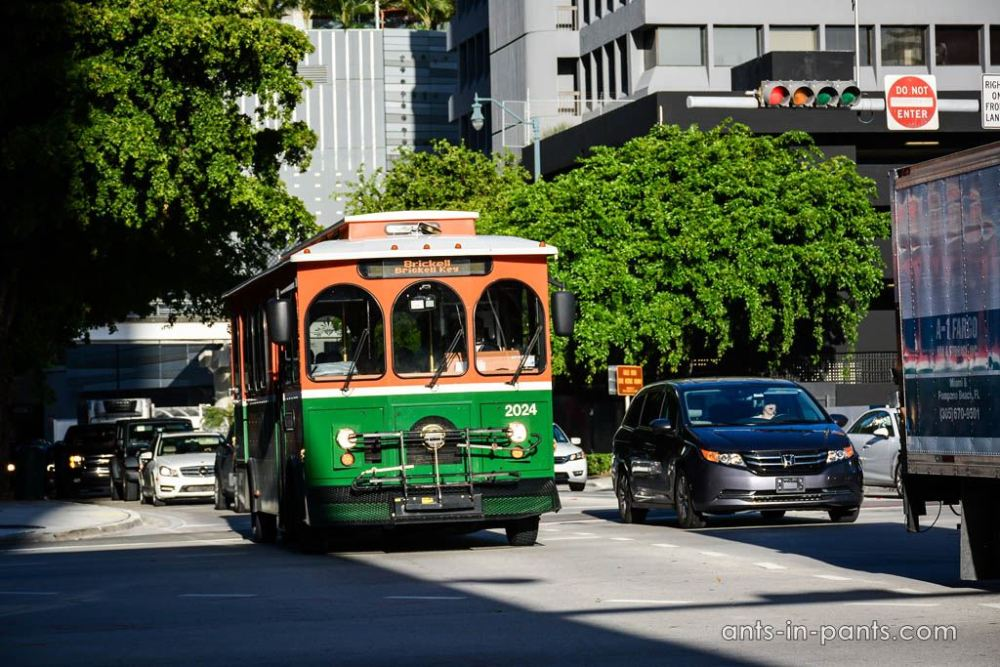 miaimi buses