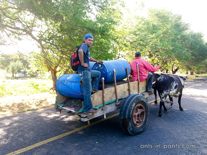 Transportation inside Ometepe