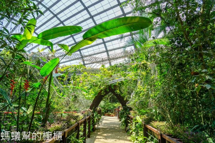 檳城Entopia蟲鳴大地 | 檳城自然動植物樂園,馬來西亞最大的蝴蝶公園,邂逅翩翩飛舞蝴蝶。