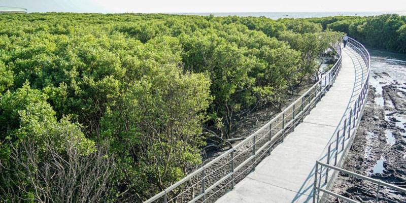 芳苑海空步道   彰化新景點,紅樹林潮間帶,海天一色,景致優美。