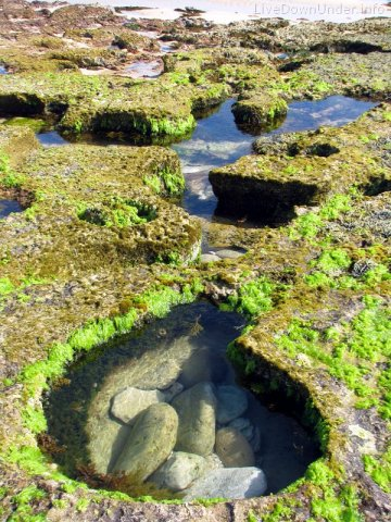 Jeszcze trochę dziurek odpływowych; w niektórych można się swobodnie wykąpać, a nawet popływać