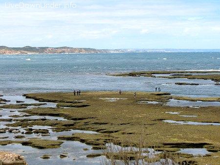 Point Lonsdale, z daleka widać Point Nepean. W tym miejscu nasza zatoka Port Phillip łączy się z oceanem