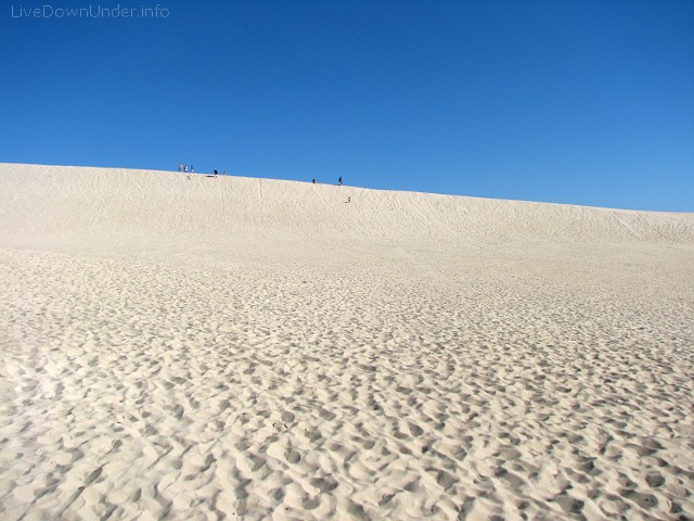 Little Sahara, Wyspa Kangura