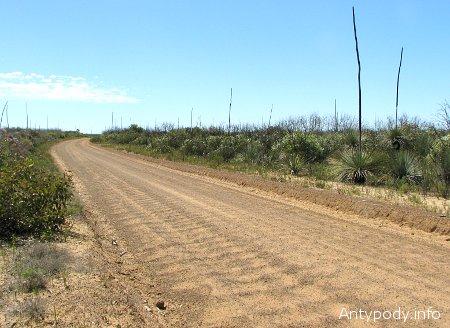 Droga na Wyspie Kangura
