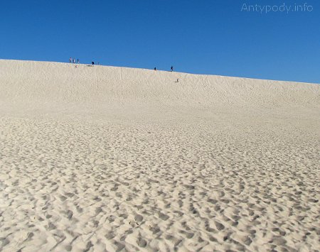Mała Sahara, Wyspa Kangura