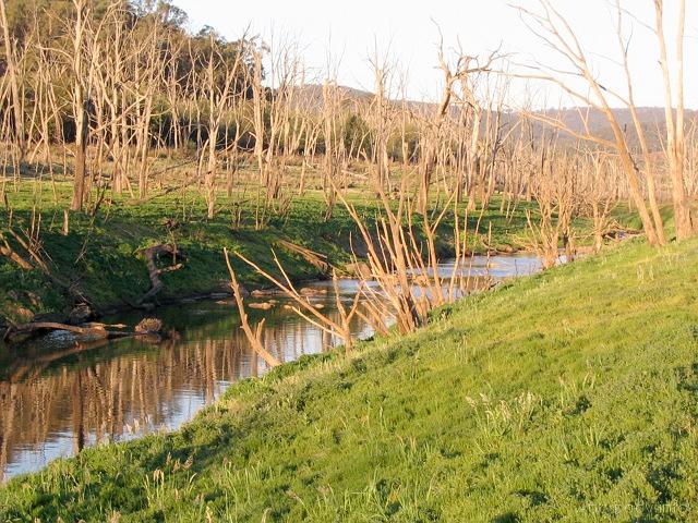 Jezioro Eildon, Wiktoria, listopad 2006