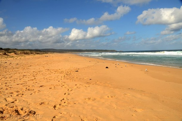 Bournda Beach, Bournda National Park, NSW, Australia
