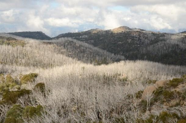 Mount Dunn, Mount Buffalo National Park, Victoria, Australia