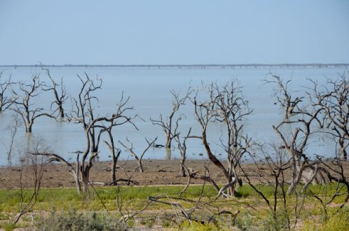 Lake Menindee, Kinchega National Park, NSW, Australia