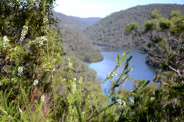 Berowra Creek, Sydney