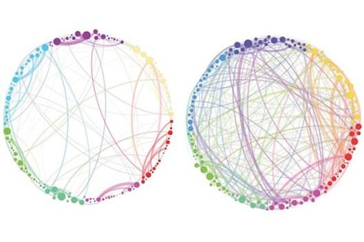 psilocybin_networks_660