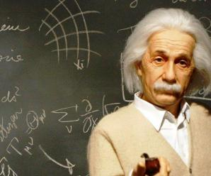 How To Become A Genius In Your Field