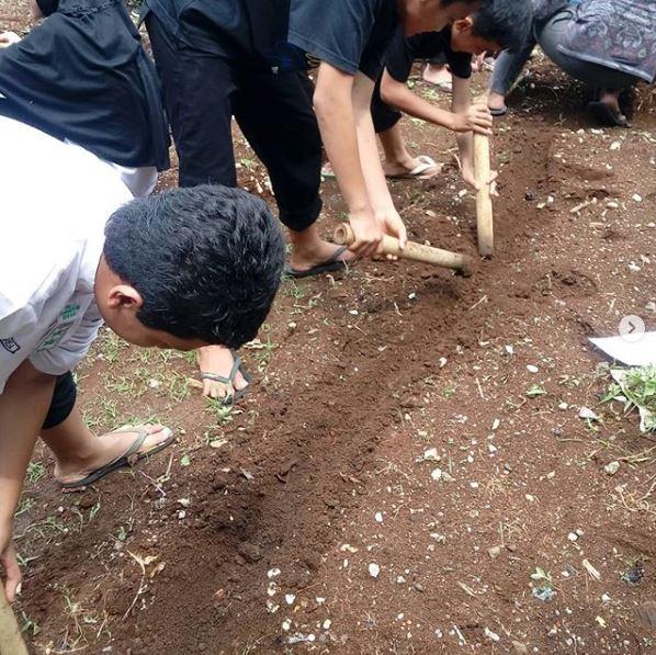 Kegiatan Berkebun Peserta Didik SMPIT Anugerah Insani