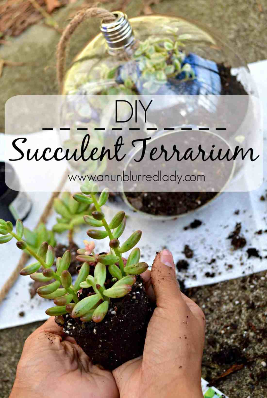 Succulent Terrarium Diy An Unblurred Lady
