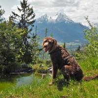 Heimatorte - Eine Reise durch Deutschland und die Welt (Auswertung Blogparade Teil 1)