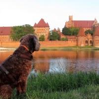 2000 km Roadtrip Polen: Ostsee, Ritterburgen und Städte mit Hund und Wohnmobil in 14 Tagen. Es geht!