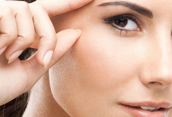眉毛の毛母細胞
