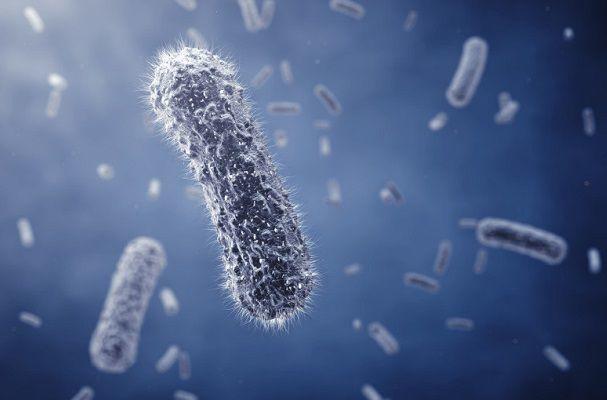 汗に細菌が繁殖