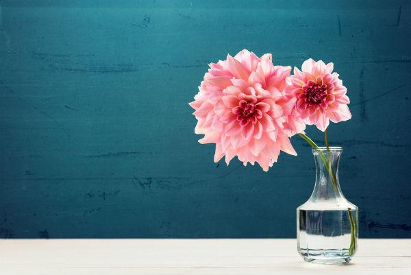 部屋に花を飾る