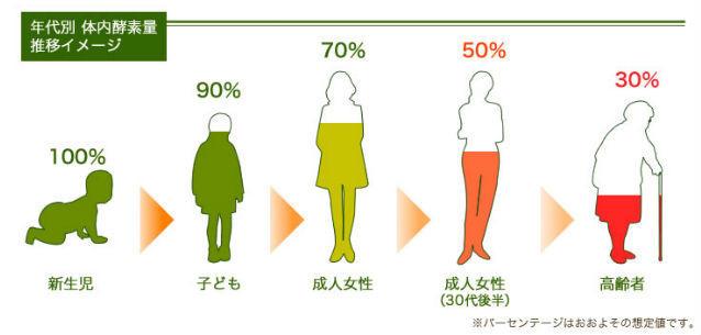 体内酵素量の変化