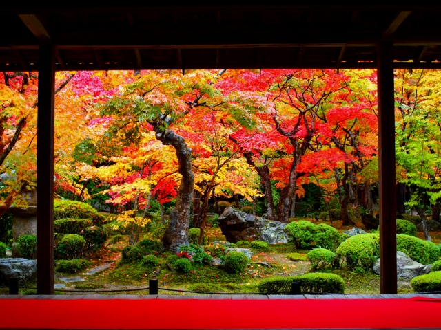 【特集】ふるさと割で紅葉と温泉を楽しむ