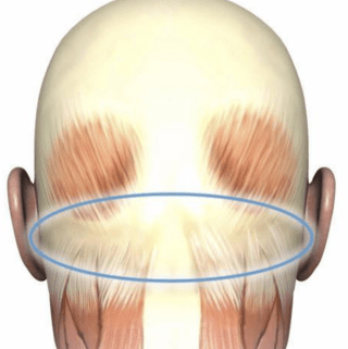 Apply Essential Oils to the Back of the Neck